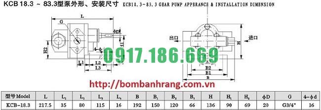 kich-thuoc-ban-ve-bom-banh-rang-kcb18.3