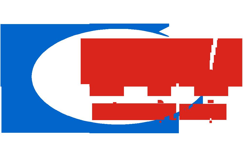 Logo bơm viêt nhật, logo bomvietnhat.com